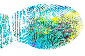 Fingerprint Engineering