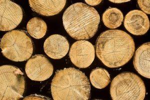 Catalytic Pyrolysis of Biomass
